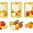 Three labels with different sorts of fruit. Vector. - Stock Vector