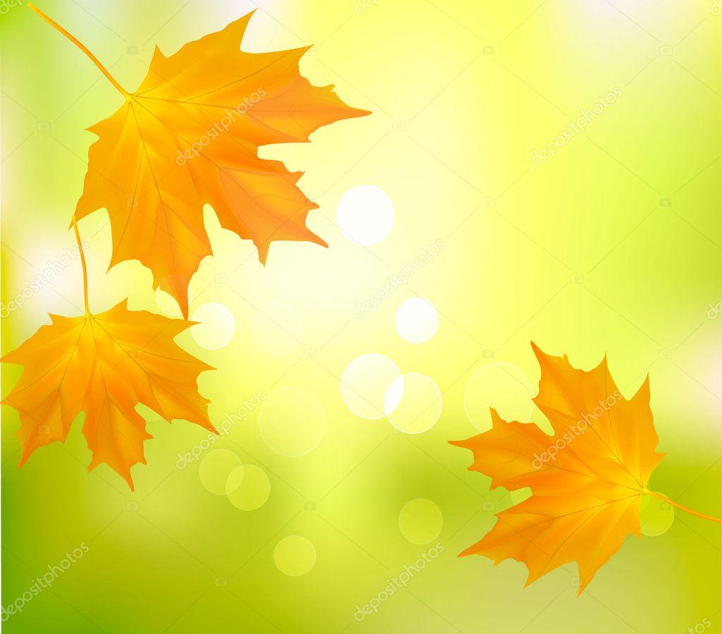 Картинки про школу и осень