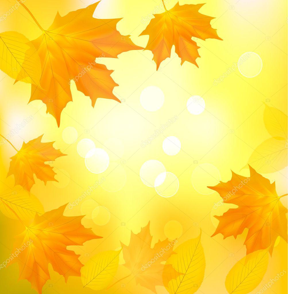 Картинки в школу про осень