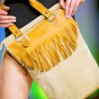Royalty-Free Stock Photo: Fashion model shows a modern bag