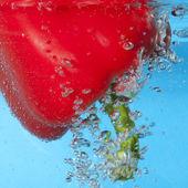 Balonlar arasında kırmızı biber — Stok fotoğraf