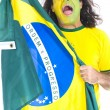 Royalty-Free Stock Photo: Brazilian Supporter