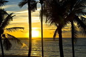 Dawn in the Beach — Stock Photo