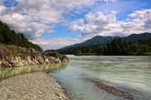 Beautiful view of mountain river in summer,Altai Mountains,Russia — Stock Photo