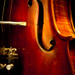 Close Up Violin Copy Space — Stock Photo #5715008