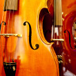 Close Up Violin — Foto Stock