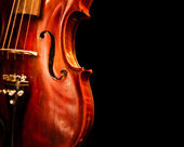 Close Up Violin Copy Space — Stock Photo