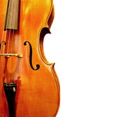 Close Up Violin — Stock Photo