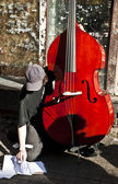 Street Contrabass Player — Stock Photo