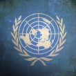 Grunge United Nations Flag — Stock Photo #5720543