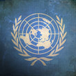 Grunge United Nations Flag - Stock Photo
