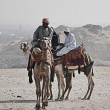 Camel Riders - Stock Photo