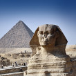 The Great Sphinx and the Pyramids — Stock Photo