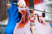 Street Musician — Stock Photo