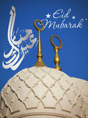 Sheikh Zayed mosque Eid Celebration — Stock Photo