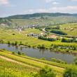 View on Moselle valley from mountain — Stock Photo