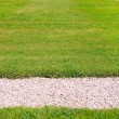 Stock Photo: Green lawn and pebbles path