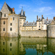 Medieval castle Sully-sur-loire, France — Stock Photo #5719089