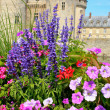 Flowers in front of castle — Stock Photo #5719091