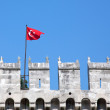 Turkey flag - Stockfoto