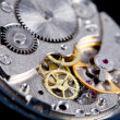 Stock Photo: Gears of wristwatch