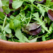 Fresh salad mix in wooden bowl — Stock Photo