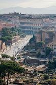 Blick auf ruinen und kolosseum — Stockfoto