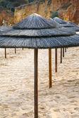 Sombreiros de palha — Foto Stock