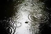 Crease marks in rain — Stock Photo