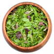 Fresh salad mix — Stock Photo