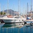 Yachts and boats in old port in Palermo — Stok fotoğraf
