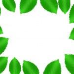 Tree of leaf — Stock Photo #5922100