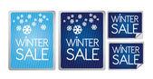 Winter sale label — Stock Vector