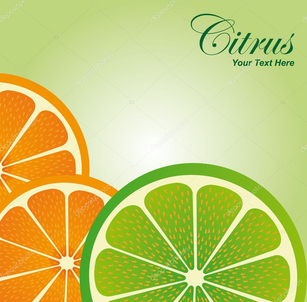 Slices orange and lemon over green white background. illustration — Stock Vector #6113940