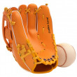 Stock Photo: Sports and leisure: baseball glove and ball isolated