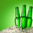 Three beer bottles getting cool in ice cubes. Isolated on a gree — Stock Photo