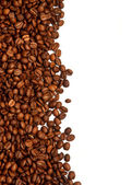 Coffee grain on white background — Stock Photo