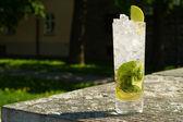 Mojito Cocktail — Fotografia Stock