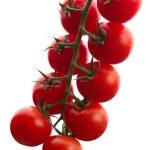 tomates fraîches — Photo
