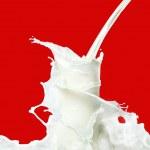 Milk splash — Stock Photo