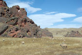 Land, Province of Salta (Argentina) — Stock Photo