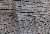 Torn wood — Stock Photo