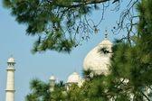 View of the Taj Mahal — Stock Photo