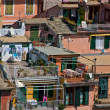 Stock Photo: Houses in Cinque Terre