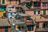 Houses in Cinque Terre — Stock Photo