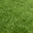 Foto de Stock  : Artificial Grass