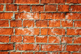 Old brickwall background — Stock Photo