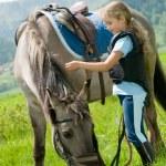 Horse and jockey — Stock Photo