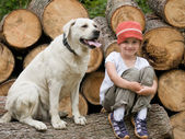 Trip with dog — Stock Photo