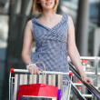 Beautifull woman with shopping cart — Stock Photo #5738549